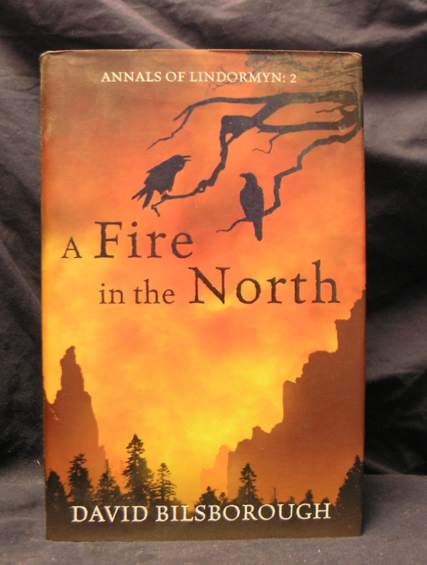 Image for A Fire in the North