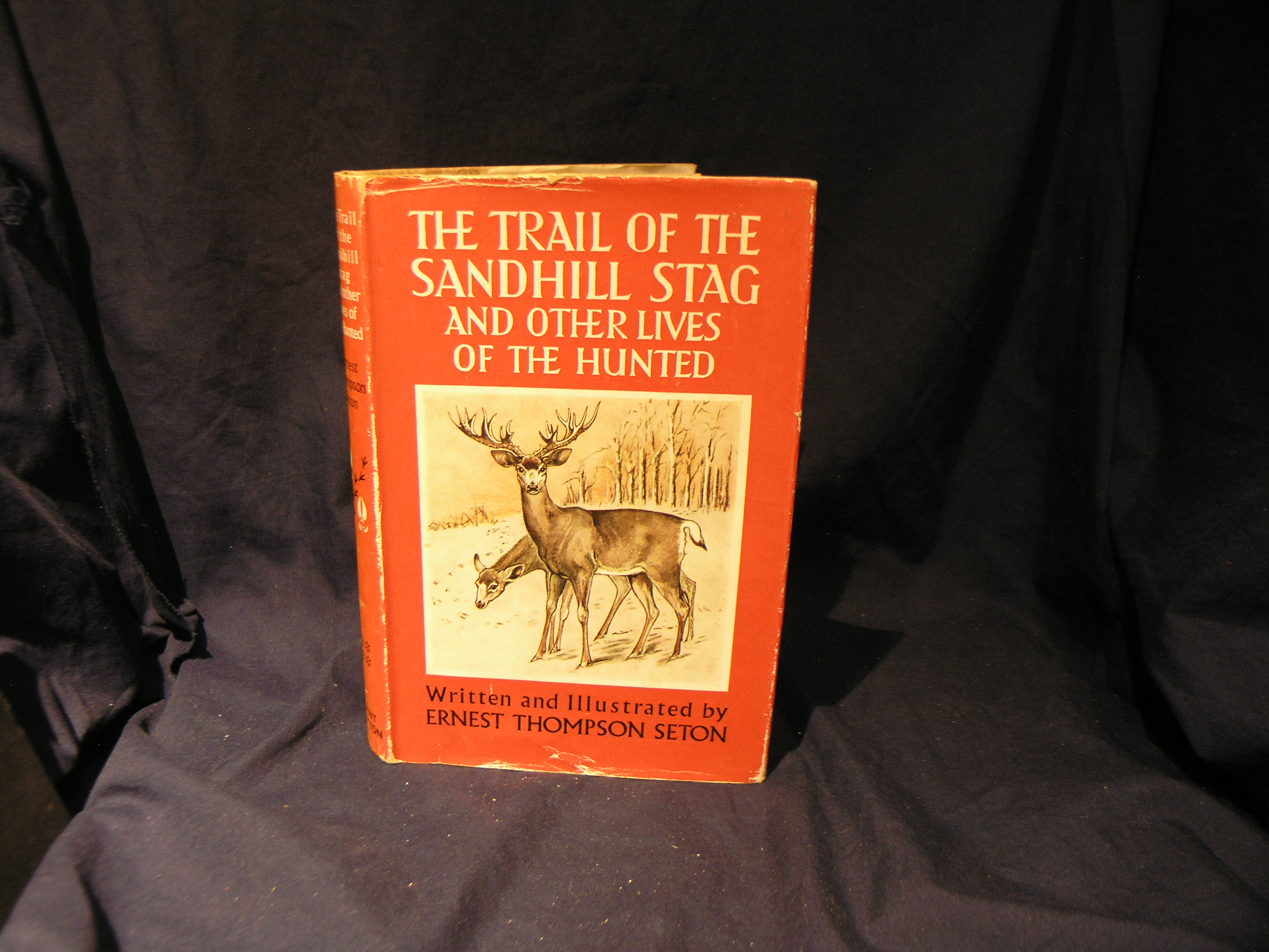 Image for The Trail of the  Sandhill Stag and other lives of the Hunted.